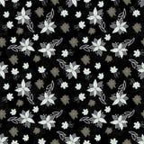 Modello senza cuciture floreale in bianco e nero dell'annata Fotografia Stock