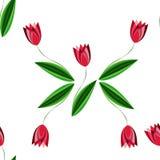 Modello senza cuciture floreale con i tulipani sparsi sui precedenti bianchi Fotografie Stock