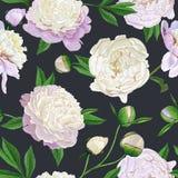 Modello senza cuciture floreale con le peonie bianche Fondo di fioritura dei fiori della primavera per tessuto, stampe, invito di illustrazione di stock