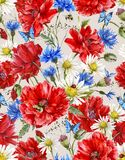 Modello senza cuciture floreale d'annata dell'acquerello di estate Fotografia Stock Libera da Diritti