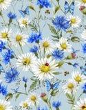 Modello senza cuciture floreale d'annata dell'acquerello di estate Immagine Stock