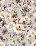 Modello senza cuciture floreale d'annata dell'acquerello di estate Fotografie Stock