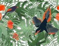 Modello senza cuciture floreale del monstera, dell'ibisco e degli uccelli delle foglie Piante tropicali, foglie della palma Retic royalty illustrazione gratis