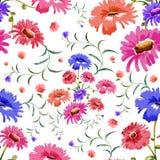 Modello senza cuciture floreale dell'acquerello royalty illustrazione gratis