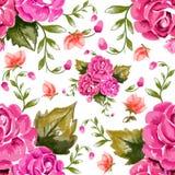 Modello senza cuciture floreale dell'acquerello illustrazione vettoriale