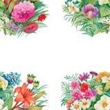 Modello senza cuciture floreale dell'acquerello con le rose ed i Wildflowers Immagini Stock Libere da Diritti