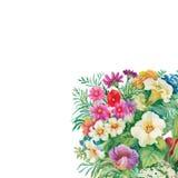 Modello senza cuciture floreale dell'acquerello con le rose ed i Wildflowers Immagini Stock