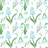 Modello senza cuciture floreale della molla dell'acquerello con i bucaneve ed i fiori blu del muscari su fondo bianco Bella stamp illustrazione di stock