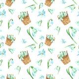 Modello senza cuciture floreale della molla dell'acquerello con i fiori di bucaneve del tebnder su fondo bianco Modello fresco lu illustrazione di stock
