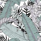 Modello senza cuciture floreale delle foglie con le piante tropicali royalty illustrazione gratis