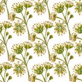 Modello senza cuciture floreale di vettore royalty illustrazione gratis