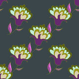 Modello senza cuciture floreale disegnato a mano multicolore Fotografia Stock