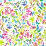 Modello senza cuciture floreale felice e luminoso con i fiori e le foglie disegnati a mano dell'acquerello Fotografia Stock Libera da Diritti