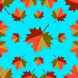 Modello senza cuciture - foglie cadenti di autunno fotografie stock libere da diritti