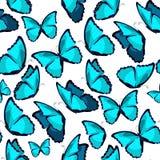 Modello senza cuciture il illust blu di vettore del monarca di morpho della farfalla Fotografie Stock Libere da Diritti