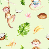 Modello senza cuciture isolato scuola materna degli animali del bambino Disegno tropicale di boho dell'acquerello, scimmia svegli Immagine Stock