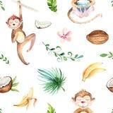 Modello senza cuciture isolato scuola materna degli animali del bambino Disegno tropicale di boho dell'acquerello, scimmia svegli Fotografie Stock Libere da Diritti