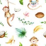 Modello senza cuciture isolato scuola materna degli animali del bambino Disegno tropicale di boho dell'acquerello, scimmia svegli Immagine Stock Libera da Diritti