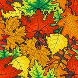 Modello senza cuciture luminoso e variopinto delle foglie di autunno Fotografia Stock