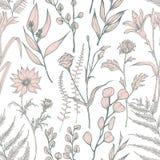 Modello senza cuciture monocromatico con i fiori selvaggi di fioritura disegnati a mano su fondo bianco Contesto naturale con ele illustrazione di stock