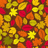Modello senza cuciture naturale di bello vettore delle foglie Immagine Stock