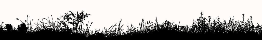 Modello senza cuciture orizzontale dell'erba Immagine Stock Libera da Diritti
