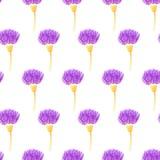 Modello senza cuciture sveglio con i fiori del cardo selvatico Illustrazione di vettore Fotografia Stock