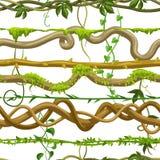 Modello senza cuciture torto delle liane selvatiche illustrazione di stock