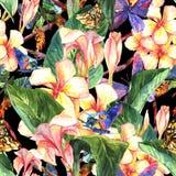 Modello senza cuciture tropicale con i fiori esotici Fotografie Stock Libere da Diritti