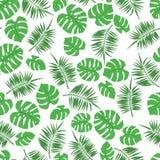 Modello senza cuciture tropicale con le foglie di monstera e della palma illustrazione di stock