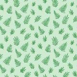 Modello senza cuciture tropicale con le foglie di palma Fogliame esotico dell'albero fatto nello stile della spazzola Vettore Immagini Stock