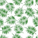 Modello senza cuciture tropicale con le foglie di palma verdi illustrazione di stock