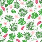 Modello senza cuciture tropicale con le foglie ed i fiori esotici illustrazione vettoriale
