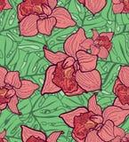 Modello senza cuciture variopinto con le foglie e le orchidee Royalty Illustrazione gratis
