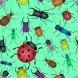 Modello senza cuciture verde degli insetti e degli scarabei di colore Immagine Stock Libera da Diritti