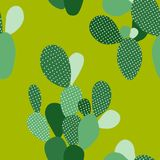 Modello senza cuciture verde del cactus di vettore immagini stock libere da diritti