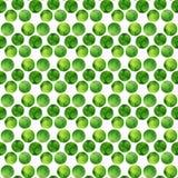 Modello senza cuciture verde dell'acquerello Pois disegnati a mano Priorità bassa astratta con i cerchi Illustrazione di vettore Fotografie Stock