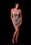 Modello sexy Fotografia Stock Libera da Diritti