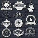 Modello stabilito dell'etichetta di ecologia dell'elemento dell'emblema per il vostro prodotto o progettazione, del web e delle a Immagini Stock Libere da Diritti