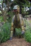 Modello stante dell'esposizione di Parasaurolophus nello zoo di Perth Fotografia Stock
