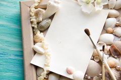 Modello sui precedenti del tema delle conchiglie, festa, lettera, cartolina Immagine Stock