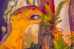 Modello sveglio del sattayaraki di Psittacosaurus nel museo pubblico P Fotografie Stock Libere da Diritti