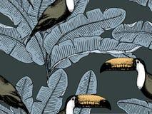Modello tropicale d'annata senza cuciture con le foglie, disegnato a mano o inciso foglia di sguardo d'annata e piante illustrazione vettoriale
