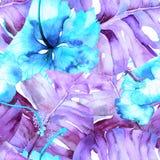 Modello tropicale dell'acquerello Immagini Stock
