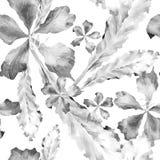 Modello tropicale dell'acquerello Immagini Stock Libere da Diritti