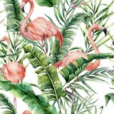 Modello tropicale dell'acquerello con le foglie di palma ed il fenicottero Ramo esotico e foglie della pianta dipinta a mano su b illustrazione di stock