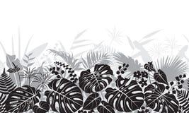 Modello tropicale di monocromio delle foglie Immagini Stock Libere da Diritti