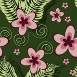Modello tropicale senza cuciture con la plumeria e la felce illustrazione vettoriale