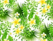 Modello tropicale senza cuciture con le foglie di palma per progettazione del tessuto o Fotografie Stock Libere da Diritti