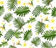 Modello tropicale senza cuciture con le foglie di palma per progettazione del tessuto o Immagini Stock Libere da Diritti